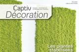 Captiv Décoration 9
